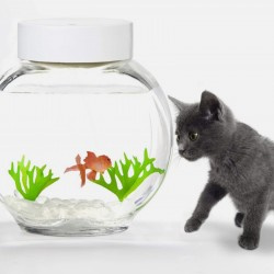 Boutique-Originale : Aquarium à faux poisson