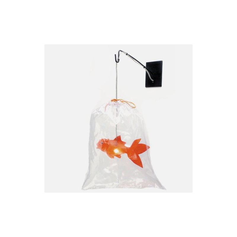 lampe poisson objet anniversaire objet original et insolite. Black Bedroom Furniture Sets. Home Design Ideas
