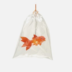 Boutique-Originale : Lampe poisson