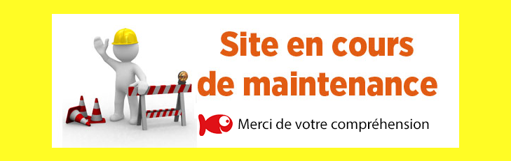 Boutique-Originale.com : Site en cours de maintenance