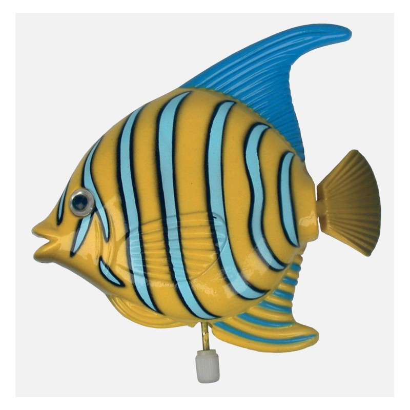 M canisme poisson exotique cadeau original cadeau rigolo cadeau insolite - Image poissons ...