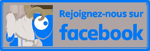 Boutique-Originale.com : Suivez-nous sur Facebook