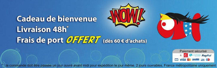 Super site, super transport ! - Boutique-Originale.com
