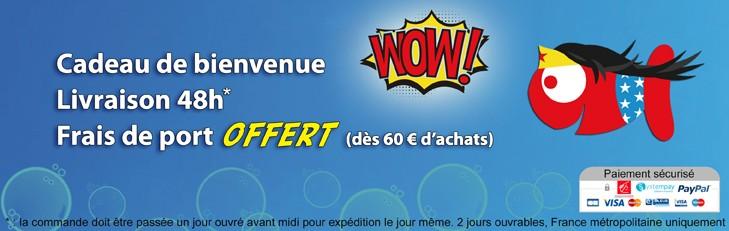 Super site, super transport ! - Boutique-Originale.com